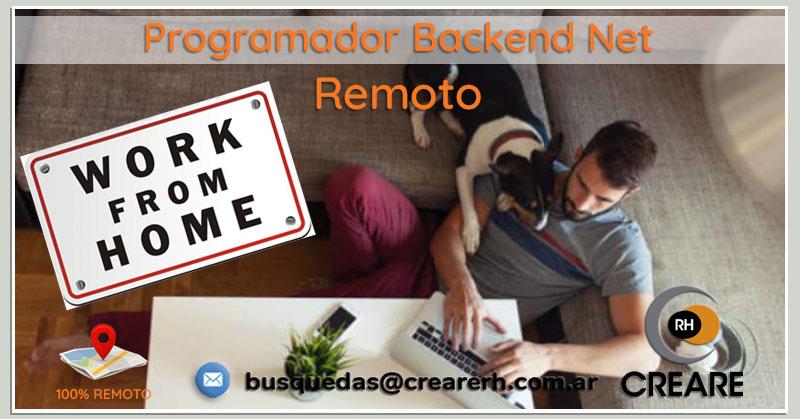 Programador Backend Net (Remoto) (Hire)